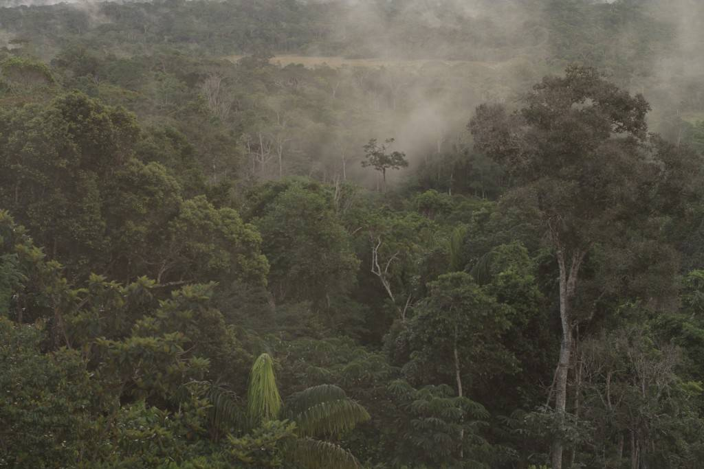 Gran Sabana - photo de Adrien Lecouturier