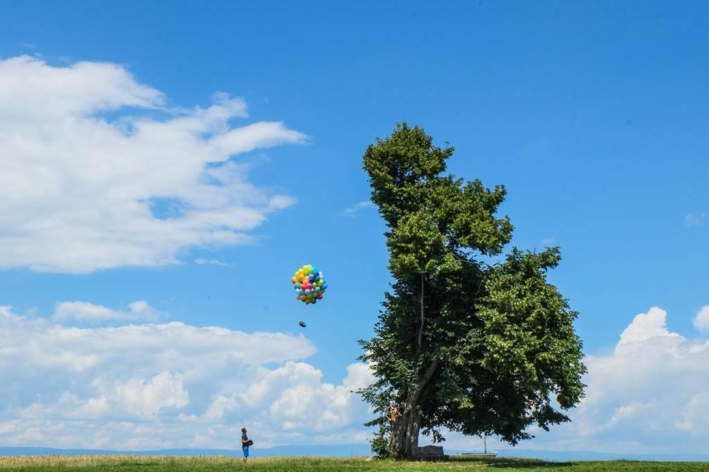 Ballons SL808export