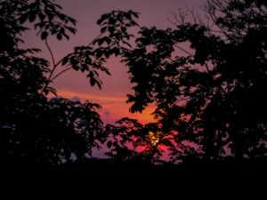 09 La tombée de la nuit (low)