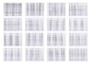 Black 5 - 3 paginas (prueba) 2